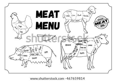 british meat cuts diagrams stock vector 274614590
