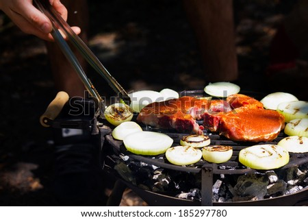 Meat on the barbecue with grill marks - stock photo