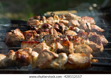 meat roasting on the grill