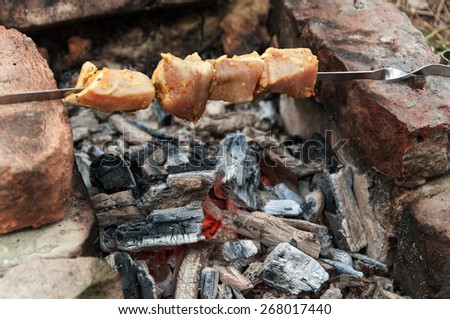 meat to be roasted on skewers over charcoal - stock photo