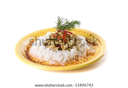 Meat with rice, decorated with pepper and dill - stock photo