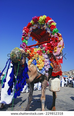 Mecca, Saudi Arabia - April 28 2007: Camel with flowers decoration for rental over blur sky. - stock photo