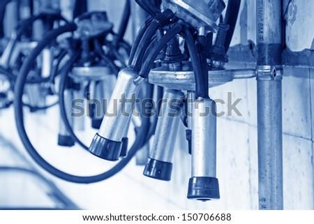 Mechanized milking equipment in a milking workshop - stock photo