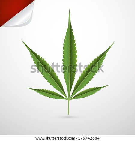 Medical Cannabis Leaf Isolated on Grey Background - Also Available in Vector Version  - stock photo