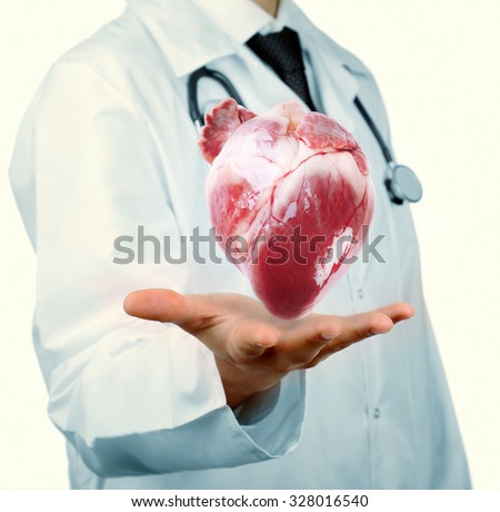 Medical concept. Male doctor with real heart in hands. - stock photo
