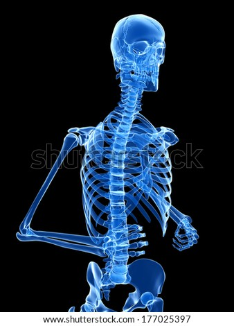 medical 3d illustration - jogging skeleton