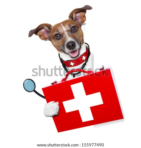 medical doctor dog beside a blank banner - stock photo