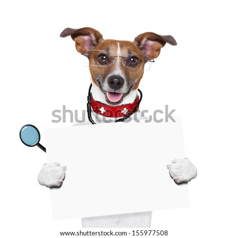 medical doctor dog holding a blank banner - stock photo