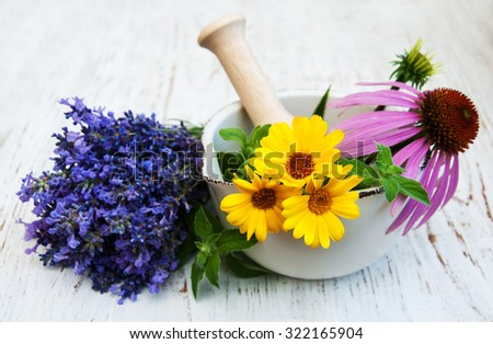 medical flowers in mortar on a wooden background - stock photo