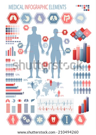 Medical infographics elements. Human body with internal organs.  - stock photo