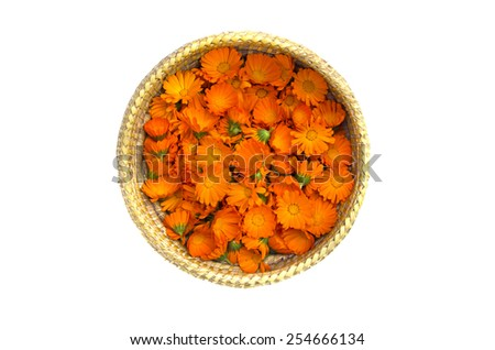 medical Marigold calendula flowers in wicker basket isolated on white background - stock photo