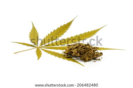 Medical marijuana isolated on white background. Therapeutic and medicinal cannabis. - stock photo