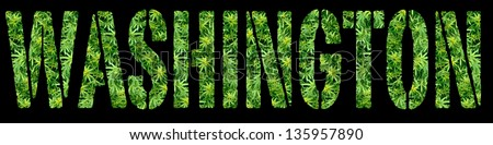 Medical Marijuana Washington - stock photo