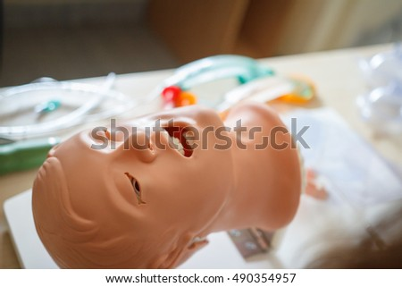 Medical model of human head on table