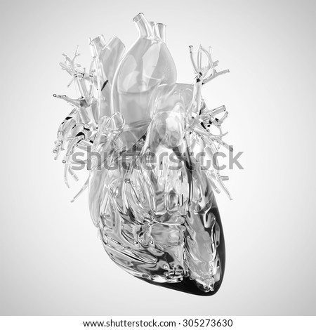 medically accurate illustration of human heart made of glass - stock photo