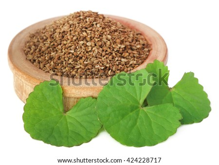 Medicinal combination of ajwain seeds in a wooden bowl with thankuni leaves