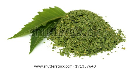 Medicinal neem leaves with dried powder over white background - stock photo