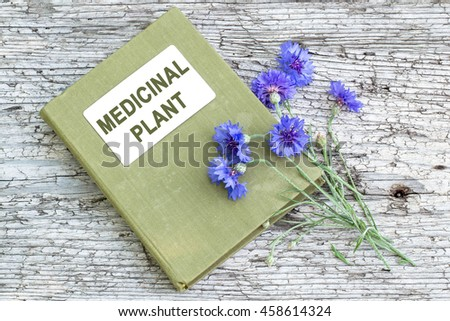Medicinal plant Centaurea cyanus, commonly known as cornflower and herbalist handbook on old wooden table - stock photo