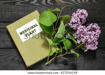 Medicinal plant lilac (Syringa) and herbalist handbook. Used in herbal medicine and for the preparation of cosmetics and perfumery - stock photo