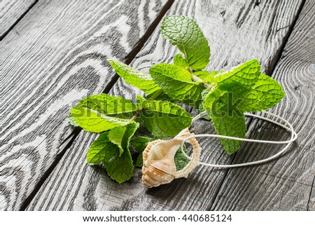 Medicinal plant: mint (Mentha spicata). Mint essential oil in aromatic pendant, fresh mint on a dark wooden table. Used in aromatherapy, phytotherapy, SPA, healthy and vegetarian food - stock photo
