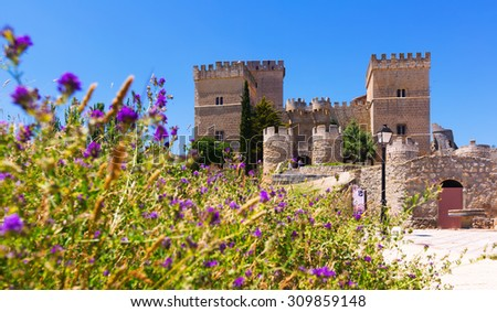 Medieval castle of Ampudia  in sunny summer day. Palencia