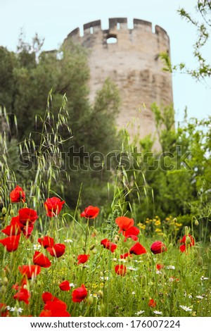 Medieval castle walls and red poppy field. Fort Saint-Andre in town of Villeneuve les Avignon (Languedoc-Roussillon, France). Nature and architecture background. Picturesque landscape. - stock photo