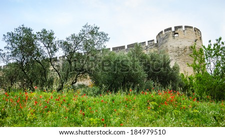Medieval castle walls and red poppy field. Fort Saint-Andre in town of Villeneuve les Avignon (Languedoc-Roussillon, France). Nature and architecture background. - stock photo