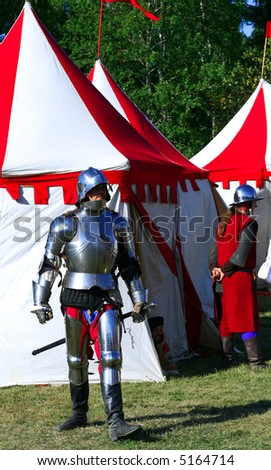 Medieval warriors in body armour