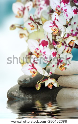 Buddha zen stock images royalty free images vectors shutterstock meditation with burning candle sciox Images