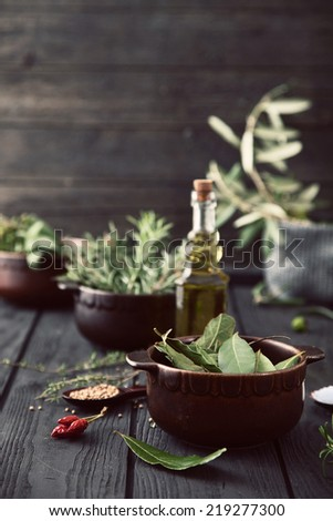 Mediterranean herbs and  ingredients: rosemary, thyme, sage, salt, oregano, olive oil - stock photo