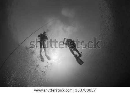 Mediterranean Sea, U.W, photo, scuba divers close to the surface - FILM SCAN