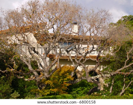Mediterranean style house behind gnarled, twisted trees