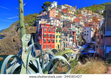 Mediterranean vegetation and old tower houses of Riomaggiore, Cinque Terre, Italy