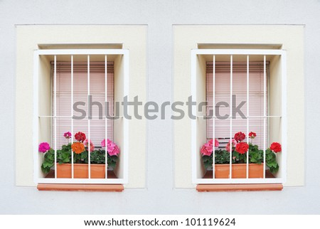 Mediterranean Window with Geranium Flowers and Security Bars in Spain Europe