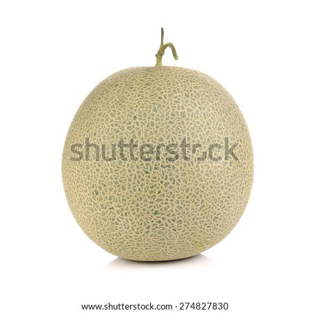 melon fruit on white background - stock photo