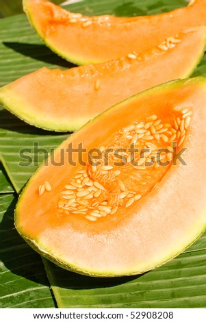 Melon on the green background - stock photo