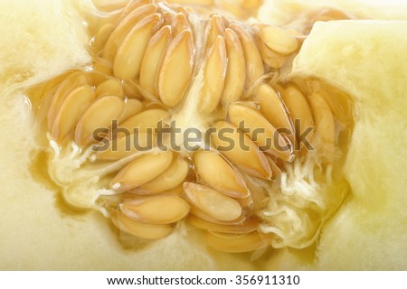 melon with seeds - stock photo