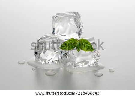 Melting chunks of ice cubes with mint leaf