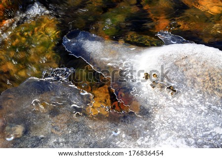 melting ice in the wild, closeup of photo