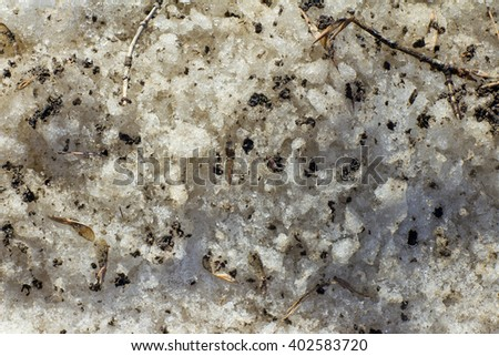 Melting snow in the spring with a spray of dirt and plants - stock photo