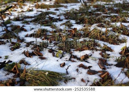 Melting snow on green grass  - stock photo