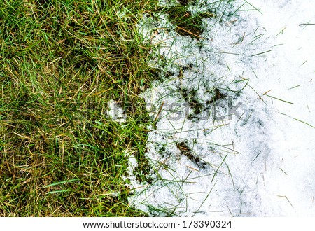 Melting snow on green grass close up - between winter and spring concept background - stock photo