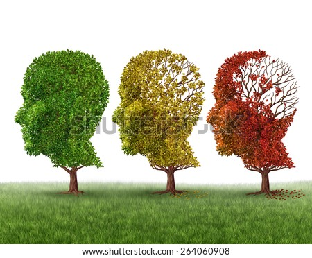 Memory loss and brain aging due to dementia and alzheimer's disease as a medical icon of a group of color changing autumn fall trees shaped as a human head losing leaves on a white background. - stock photo