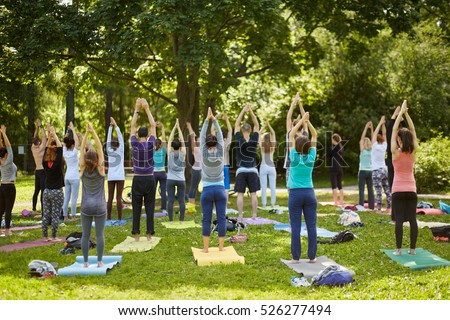Men and women make exercises during yoga training on grass at summer day in park, rear view.