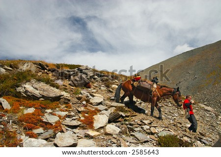 Men, horse and mountains. Altay. Russia. - stock photo