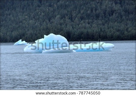 Mendenhall Glacier, Alaska, U.S.A - August 5, 2012 - The view of the floating glaciers