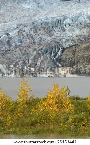 Mendenhall Glacier, Juneau, Alaska - stock photo