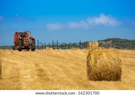 Menorca combine tractor wheat with round bales in golden field - stock photo