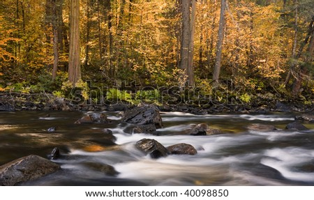Merced River Section - stock photo