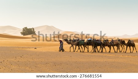 MERZOUGA, MOROCCO, APRIL 13, 2015: Dunes Erg Chebbi - Local men and camels used for tours into the erg - stock photo